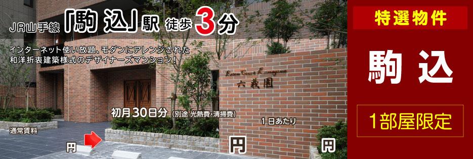 Estem Court Komagome 六義園